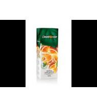 Apelsinų gėrimas ELMENHORSTER (30%), 1,5 L